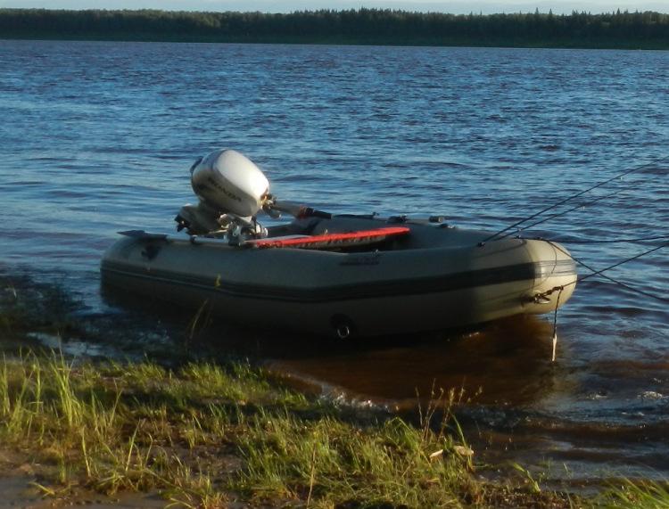 зодиак фиш лодки