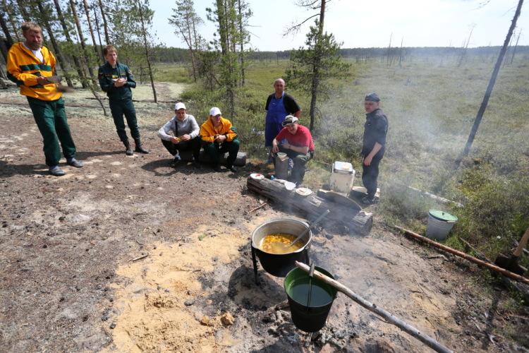 агентство лесного хозяйства красноярского края купить билеты финальные